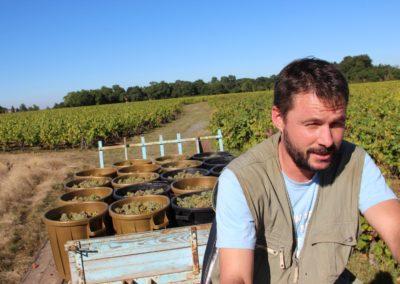 Domaine Michel Bregeon : Fred en pleine vendange