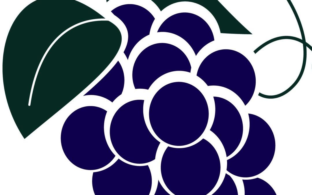 Grape Experiences
